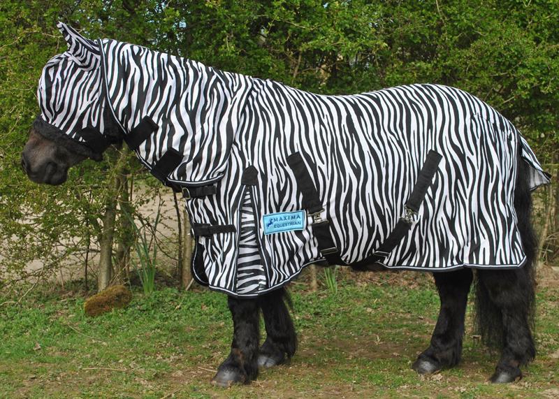 Shetland Pony Rug Home Decor