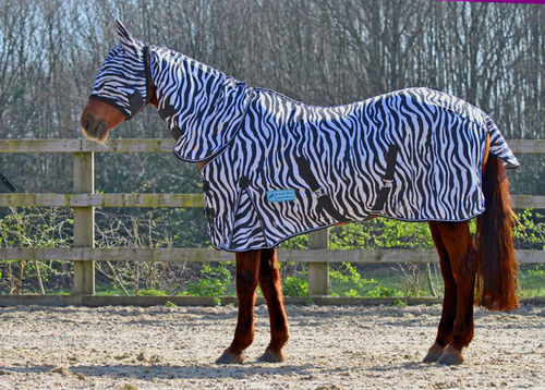 BUCKLE FRONT ZEBRA COMBO FLY RUG - STANDARD SIZES