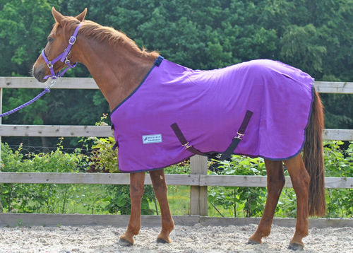 PURPLE SUMMER SHEET - SHETLAND SIZES