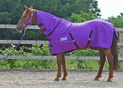 PURPLE COMBO SUMMER SHEET - SHETLAND SIZES