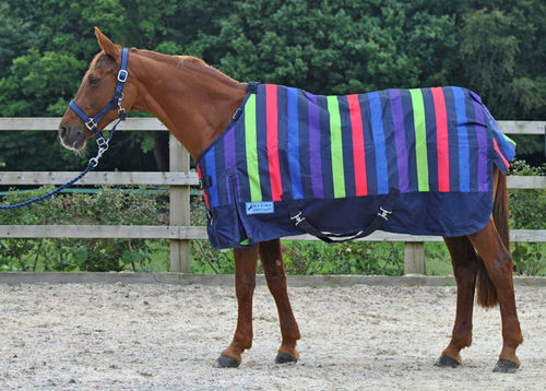 1200 DENIER MEDIUMWEIGHT STANDARD NECK TURNOUT RUG - MULTI STRIPE