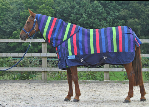 1200 DENIER MEDIUMWEIGHT DETACHABLE NECK TURNOUT RUG - MULTI STRIPE