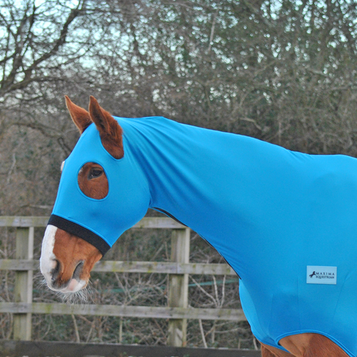 LYCRA HOOD WITHOUT EARS - TEAL
