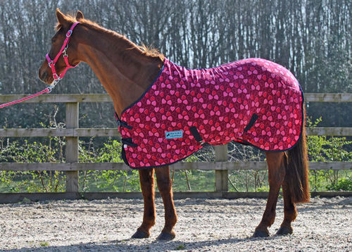 HEART FLEECE RUG - STANDARD SIZES