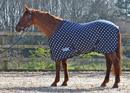 NAVY STAR FLEECE RUG - STANDARD SIZES