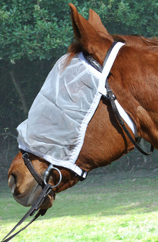 RIDING FLY MASK