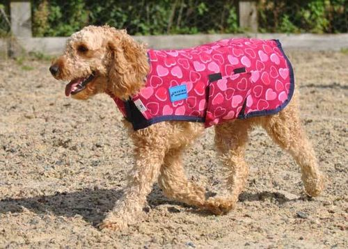 FLEECE DOG COAT - HEART - S & M
