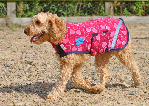 FLEECE DOG COAT - HEART - L & XL