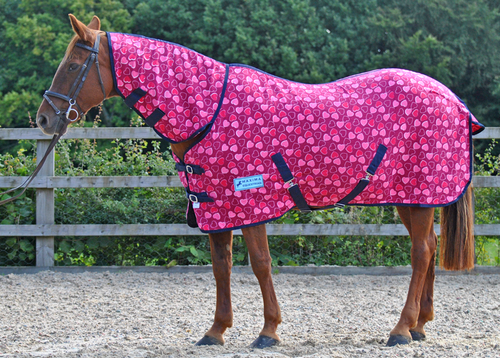 COMBO HEART FLEECE RUG - STANDARD SIZES