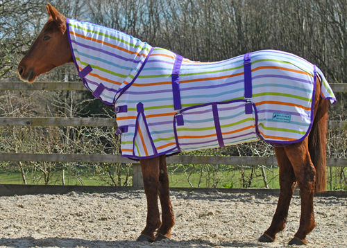 MULTI STRIPE COMBO FLY RUG WITH BELLY WRAP - STANDARD SIZES