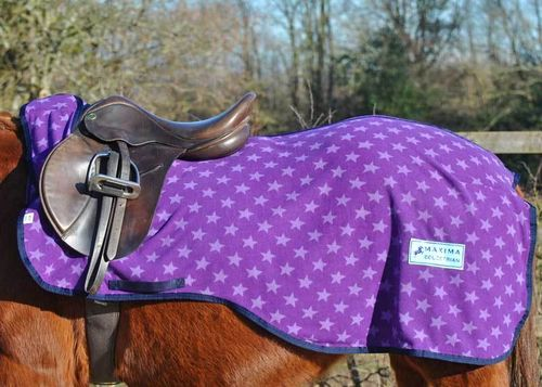 PURPLE STAR FLEECE EXERCISE SHEET