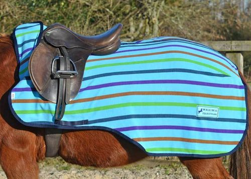 MULTI STRIPE FLEECE EXERCISE SHEET