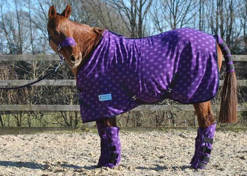 PURPLE STAR FLEECE RUG - STANDARD SIZES