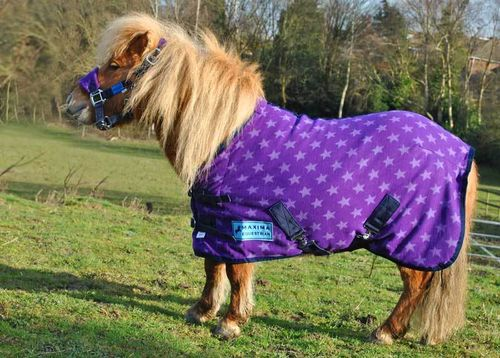 PURPLE STAR FLEECE RUG - SHETLAND SIZES
