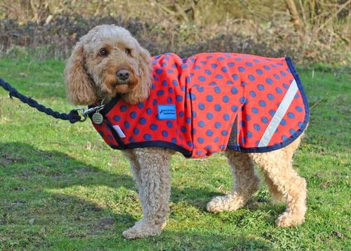 FLEECE DOG COAT - RED NAVY SPOT - S & M