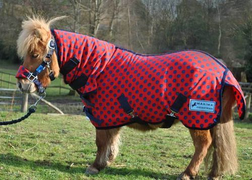COMBO RED WITH NAVY SPOT FLEECE RUG - SHETLAND SIZES