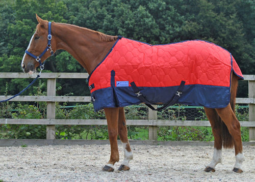 HEAVYWEIGHT STANDARD NECK STABLE RUG