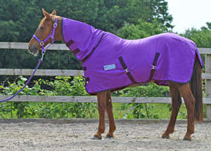Quality Horse Pony Donkey Amp Shetland Rugs At Discount Prices